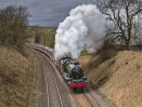 © John Cooper-Smith  <em>Last steam before lockdown</em>