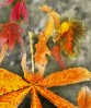 © Margaret Smith  <em>Autumn Shapes _2</em>